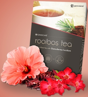 cafe rooibos red tea
